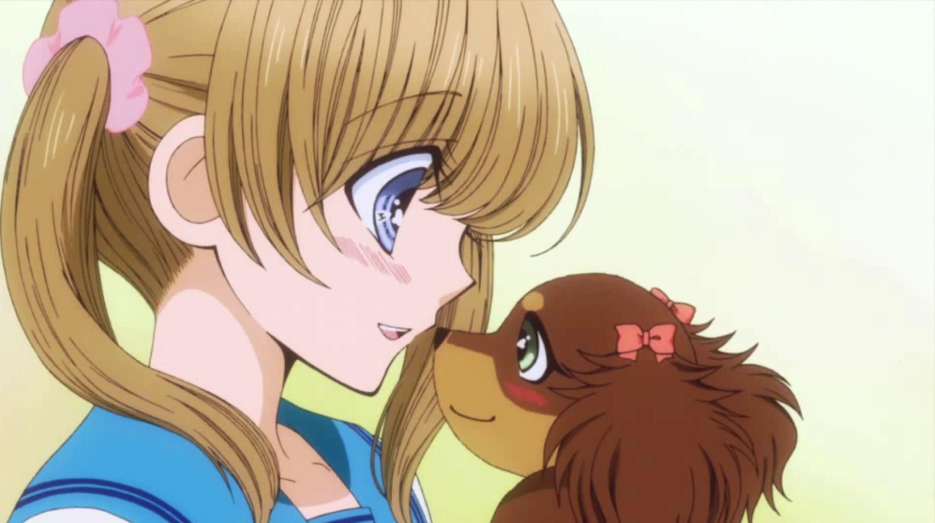 chocotan   anime