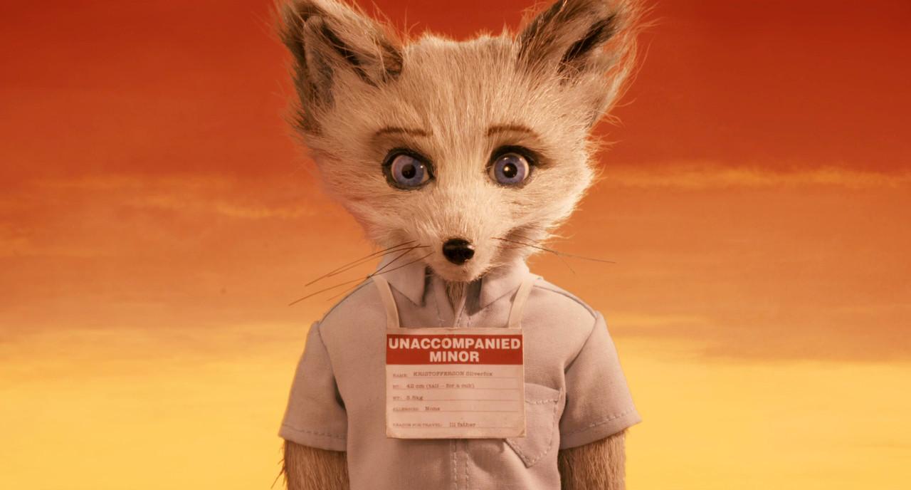 Fantastic Mr Fox Anime Animeclick It