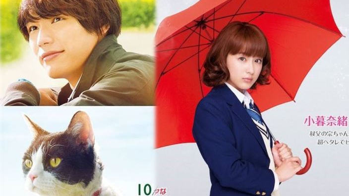 Next Stop Live Action: Honey, Hana Yori Dango Next, le cronache del gatto