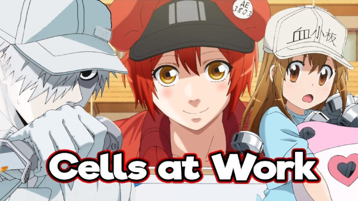 Cells at Work!: promosso a pieni voti pure da un dottore!