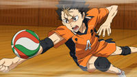 Haikyuu! Gallery 9